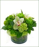Green Zest glass Vase table arrangement
